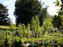 Ekološka kmetija Lenič Irena