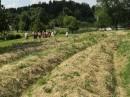 »Pri Baronu« - Izletniška-ekološka kmetija Uranjek